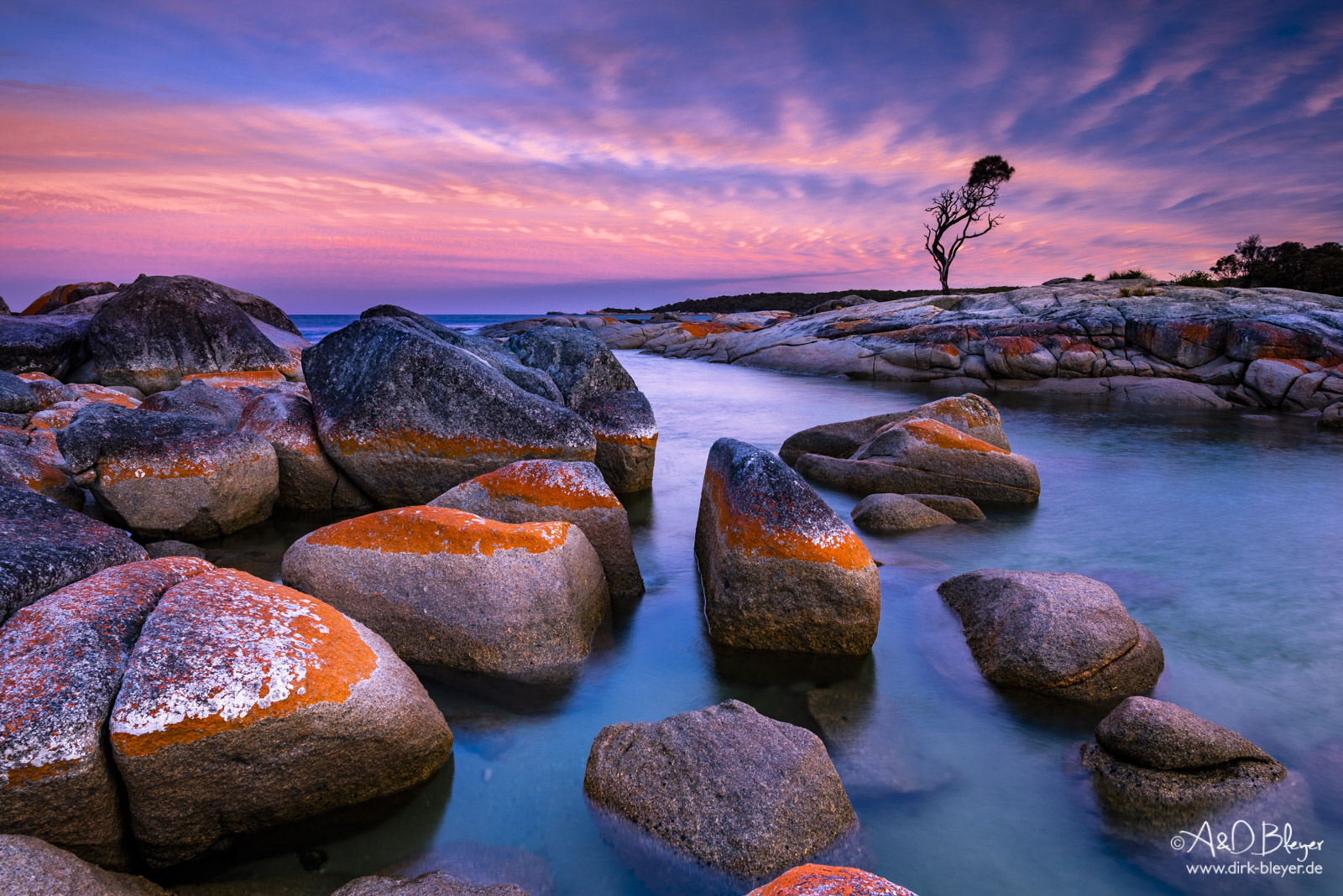 Bay of Fires in Tasmanien